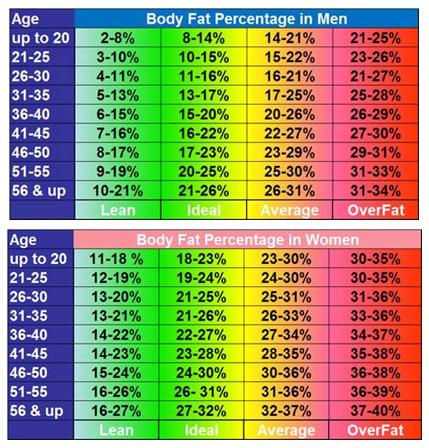 Fat Percentage Table